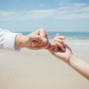 婚前/婚姻關係分析評估